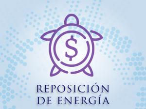 Reposición de energía